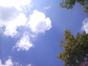Looking up at my wide blue sky