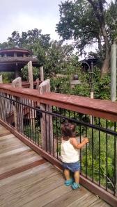 Children's Garden, a maze of hidden forts, bridges, and gardens