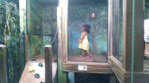 Fun indoor play areas in the Children's Zoo