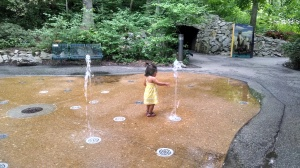 Nothing keeps her attention like these randomly erupting spouts at the Children's Zoo splash pad