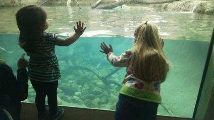 Otter tank